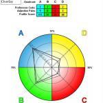 HBDI Sample Profile Result