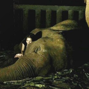 """How To Sing an Elephant to Sleep :  The """"Baby Elephant Lullaby"""" & One Contented Snoring Elephant"""