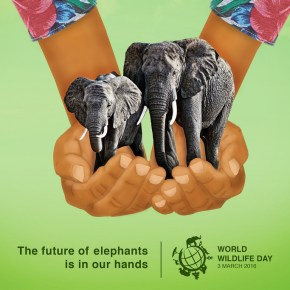 World Wildlife Day : For Our Elephants