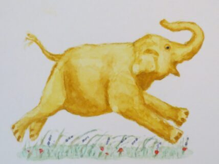 Elephant paintings watercolor Addison Elephant Free Peanuts