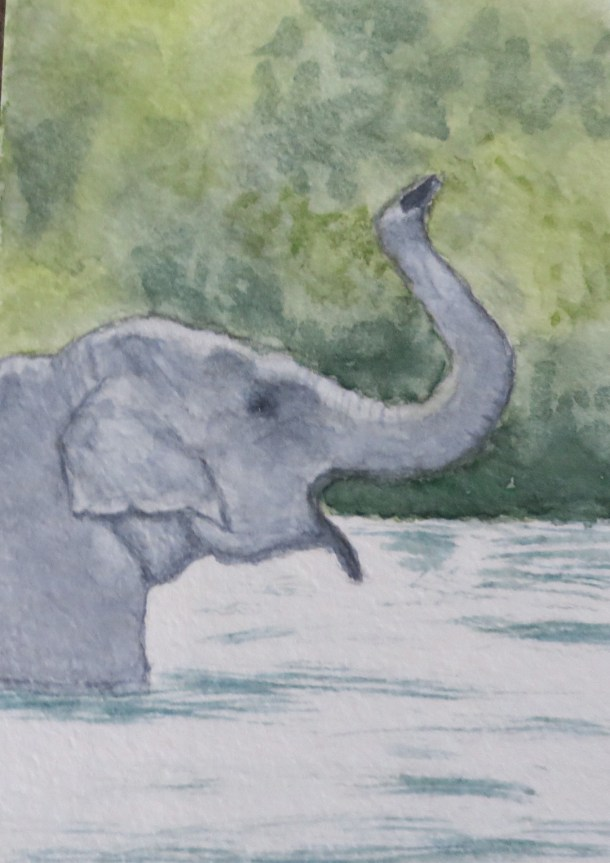 Elephant Art by Addison grey ele profile in water mouth open (2)