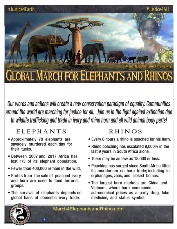 GMFER2017-Poster-Blank