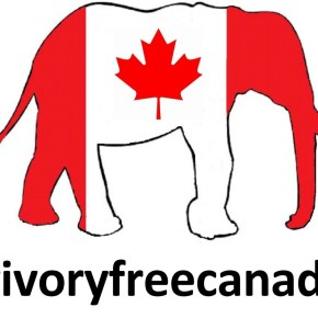 #IvoryFreeCanada :   An Essential  Elevent  in the Countdown to World Elephant Day :  Canada, You Can Do This