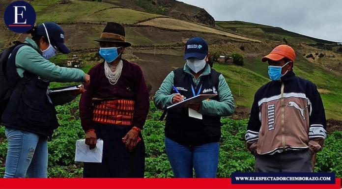 Rosario Roldán Pullay, habitante de la comunidad Atapo Santa Cruz, en la parroquia Palmira, cantón Guamote, fue una las primeras productoras en ser encuestadas como parte del Registro Nacional Agropecuario. Foto: MAG.