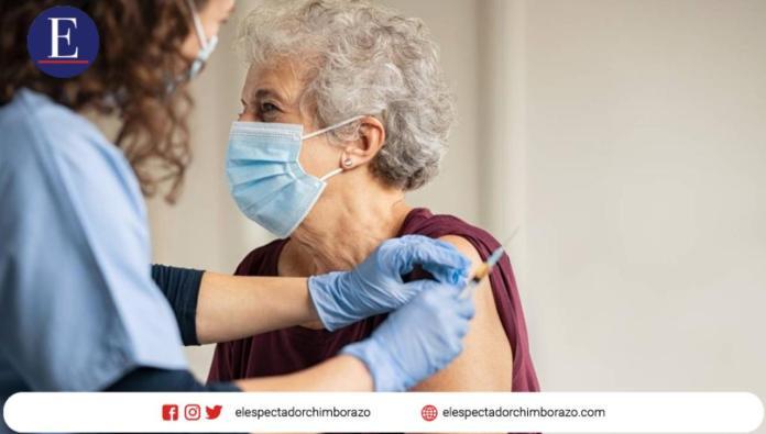 Desde el 15 de marzo del 2021, las personas mayores de 65 años que aún no han recibido la vacuna de inmunización contra el COVID-19 en Ecuador podrán registrarse en la página web www.planvacunarse.ec para acceder a una cita de vacunación. Foto: Piktochart.