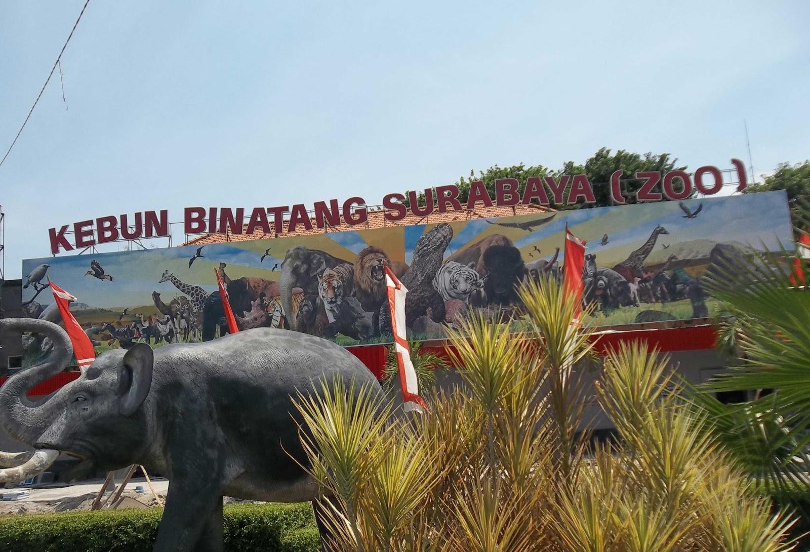 10 Gambar Kebun Binatang Surabaya KBS Harga Tiket Masuk