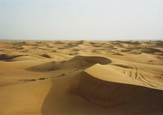 Evangelio apc Desierto
