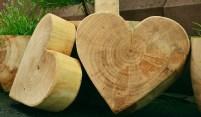 Evangelio apc maderas de corazón