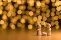 Evangelio apc Navidad