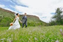 Lyons Weddings - Elevate