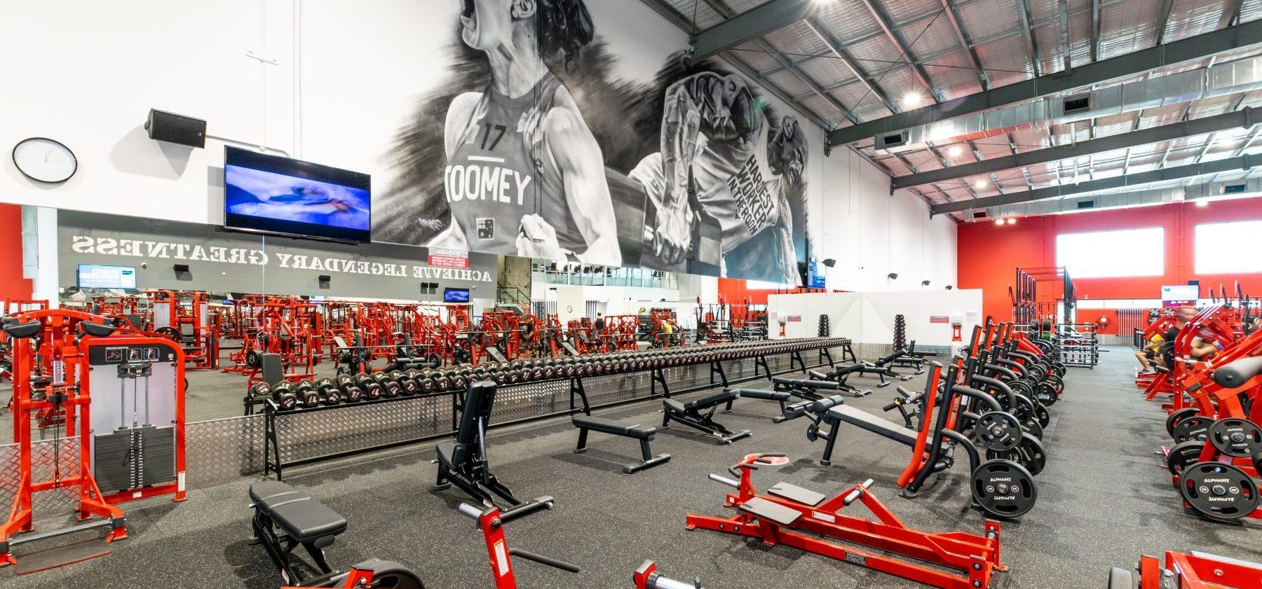 World Gym Interior Weights