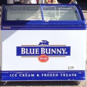 Ice Cream Freezer Cart