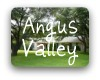 Angus Valley Austin TX Neighborhood Guide