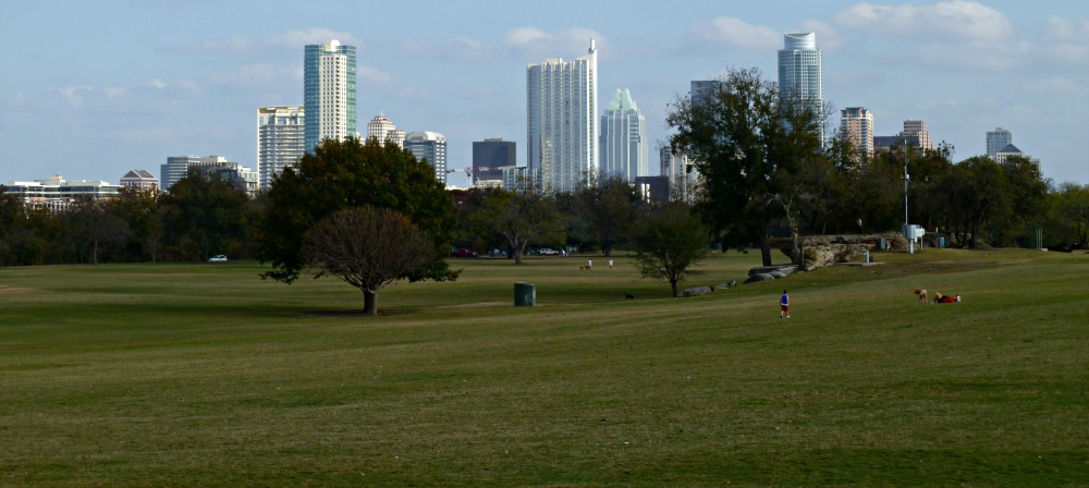 Austin named 10 best cities for urban forests
