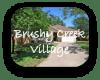Brushy Creek Village Austin TX Neighborhood Guide