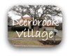 Deerbrook Village Austin TX Neighborhood Guide