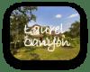 Laurel Canyon Austin TX Neighborhood Guide