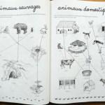 activité Montessori animaux