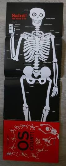 poster squelette pour enfant