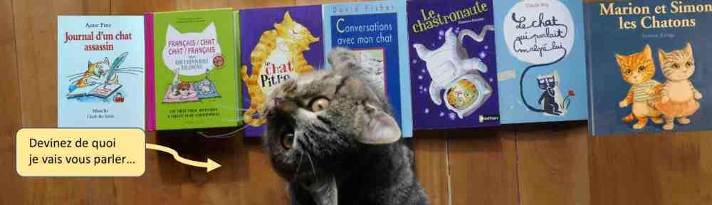 livre jeunesse histoire de chat