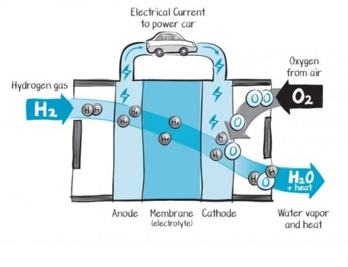 How does Fuel cell work?