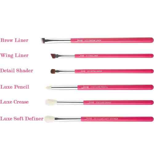 Jessup Individual Brushes Set Rose Carmine Silver T201