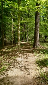 Fitness Trail, Cumberland Gap National Park