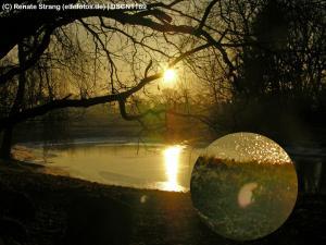 Lichtelfe am Teich
