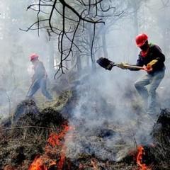 """""""2020 será un año 'muy vulnerable' a incendios"""" – CONAFOR"""
