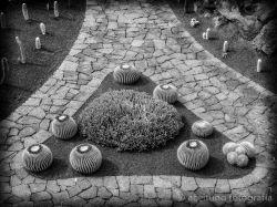 Museo de Cactus, Lanzarote, noviembre de 2008. Fotógrafo: Daniel Ramos.