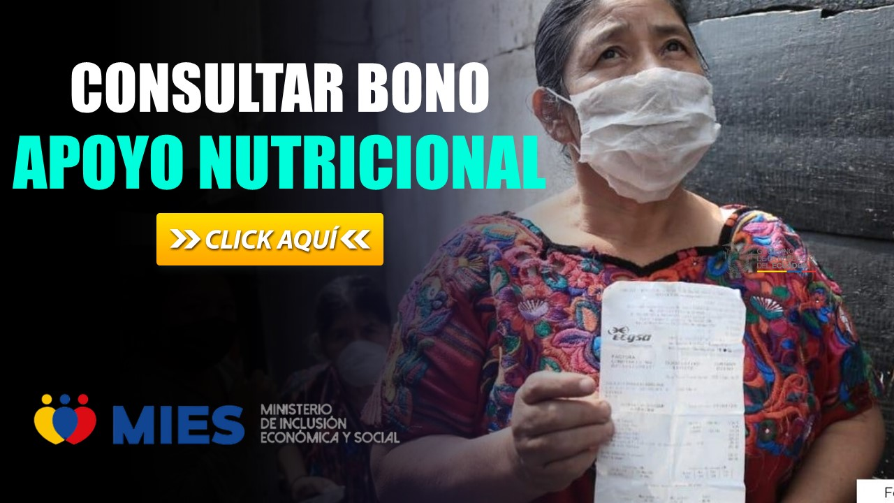 Consultar Bono de Apoyo Nutricional Ecuador