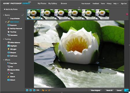 Photoshop Express Adobe lanza Photoshop Express para iPad