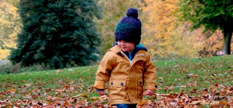 Damos la bienvenida al otoño