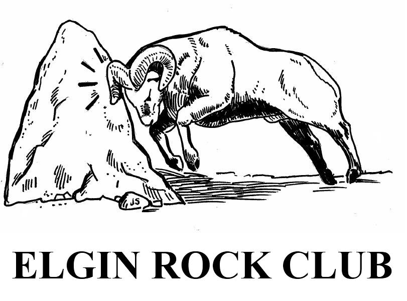 Home [elginrockclub.org]