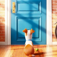 The Secret Life Of Pets: Trailer estreno subtitulado