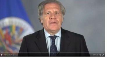 La OEA dice que la reelección no es un derecho fundamental