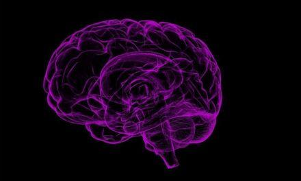 El cerebro de los psicópatas se transforma en la infancia