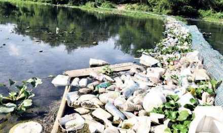 El Nigua pasó de ser un río encantador a gran basurero