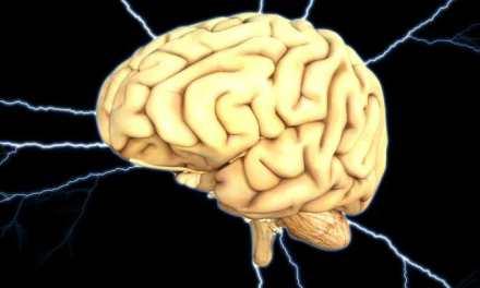 La irreversibilidad de la muerte cerebral, cuestionada