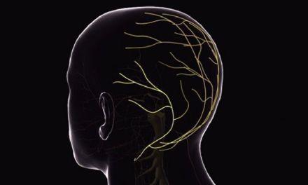 Un estudio reivindica el papel de dos médicos españoles del siglo XIX en la historia de la Neurología