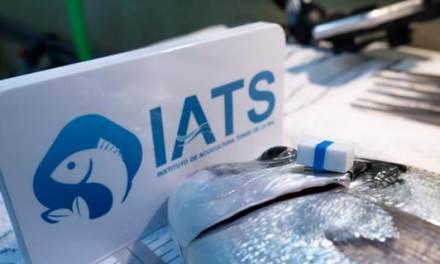 Un dispositivo inteligente monitoriza el comportamiento de los peces de cultivo