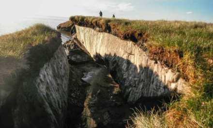 Los suelos del permafrost podrían estar perdiendo carbono más rápido de lo que se creía