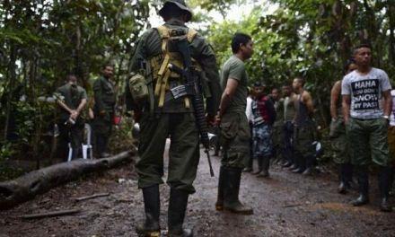 El Gobierno colombiano anunció que ampliará por un año más los 24 Espacios Territoriales de la FARC