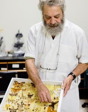 Abraham Abud Antún, referente de la entomología dominicana