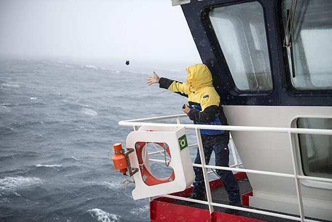 El engañoso enfriamiento en la superficie del océano Antártico