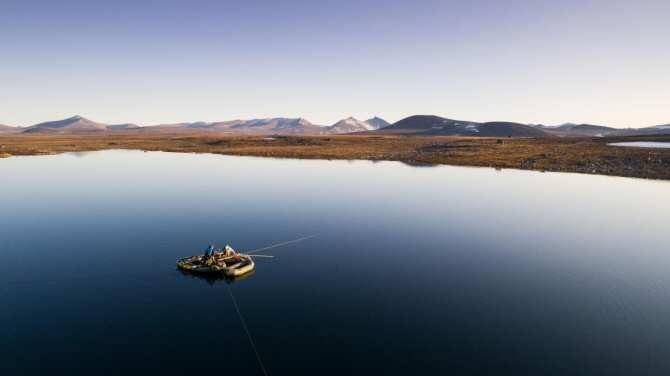 El Ártico blanco y el Ártico verde
