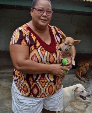 Una casa de acogida para perros y gatos: el sueño de Ana Yira y defensores de animales en San Cristóbal