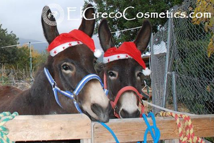 New Christmas cosmetic products