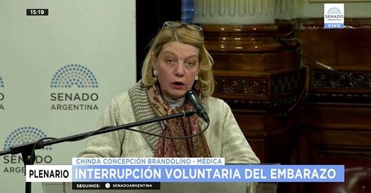 INTERRUPCION VOLUNTARIA DEL EMBARAZO