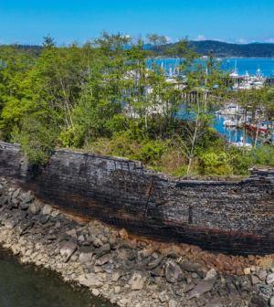 Barco histórico reclamado por la naturaleza tiene una segunda vida como rompeolas